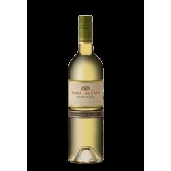 Terra Del Capo Pinot Grigio
