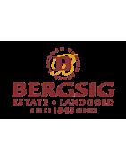 Bergsig